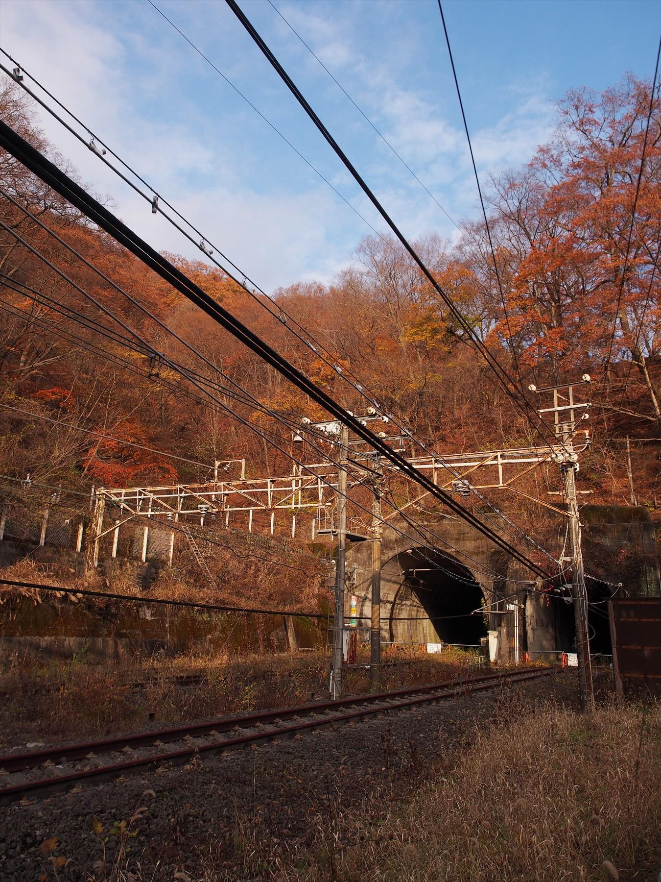 PB200540TN_R2015.jpg