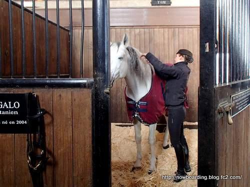 生きた馬の博物館 大厩舎 シャンティイ