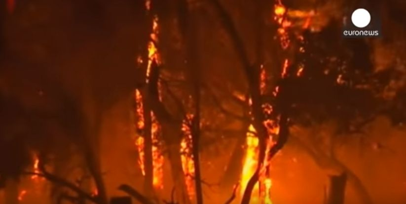 オーストラリア西部で「壊滅的」な森林火災…決死の消火活動