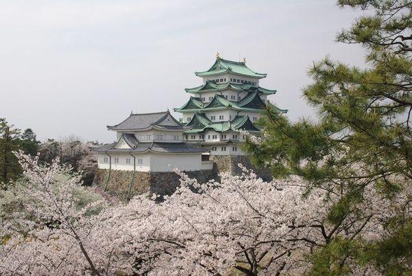 南海トラフで愛知県が「地震や津波」でやられたら、どうなるんだろうな?