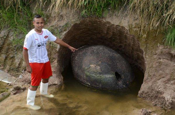 【まるで恐竜】アルゼンチンでアルマジロに近い「古代生物グリプトドン」の巨大甲羅の化石が見つかる