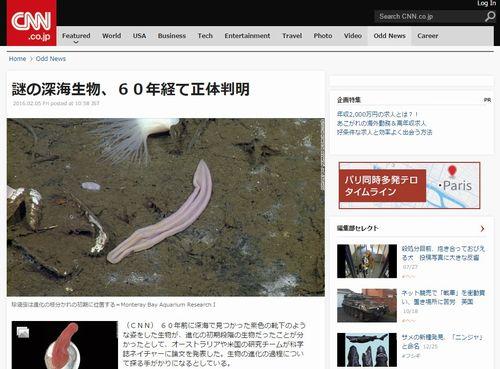 謎の深海生物・珍渦虫(ちんうずむし)…60年経て正体判明