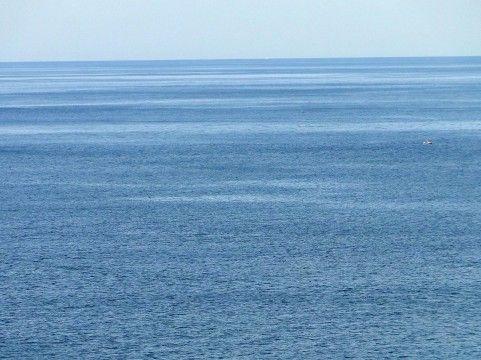 【安全】福島県沖、魚介類の放射性物質が大幅減 → 「原発作業の進展で放射性物質の排出量が減ったため」