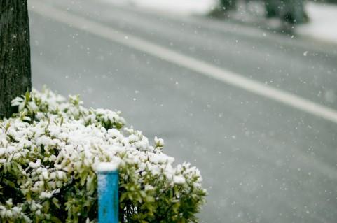 【暖冬から一転】100年に1度、最強クラスの大寒波が到来…沖縄でも雪の可能性、西日本は3日分の食糧の確保を