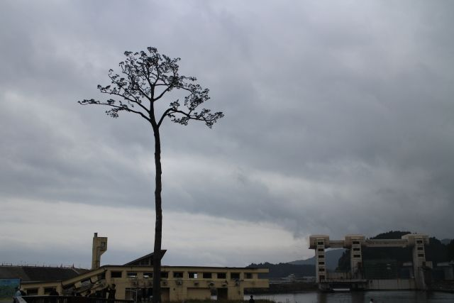 福島県浪江町にある「ビッグウェーブ」という名の施設は「津波を連想」する…名称を変更すべきではとの声