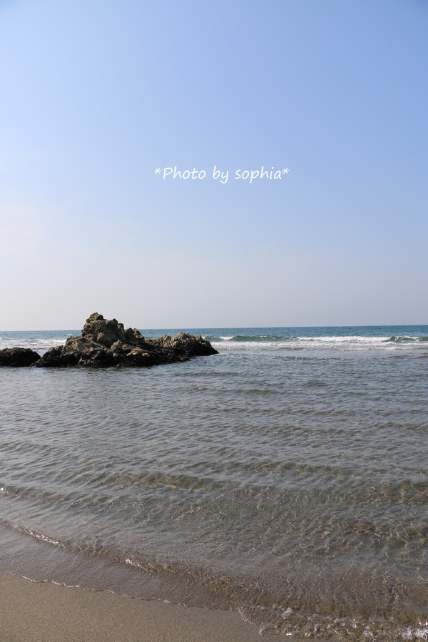 マイブームの海