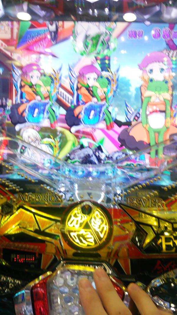 DSC_0184_20160222175834371.jpg