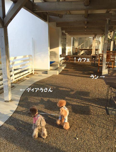 IMG_71402.jpg