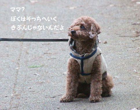 IMG_902422.jpg