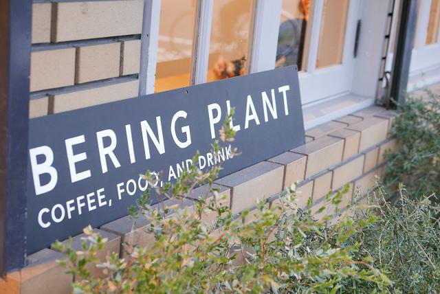 bering plant019