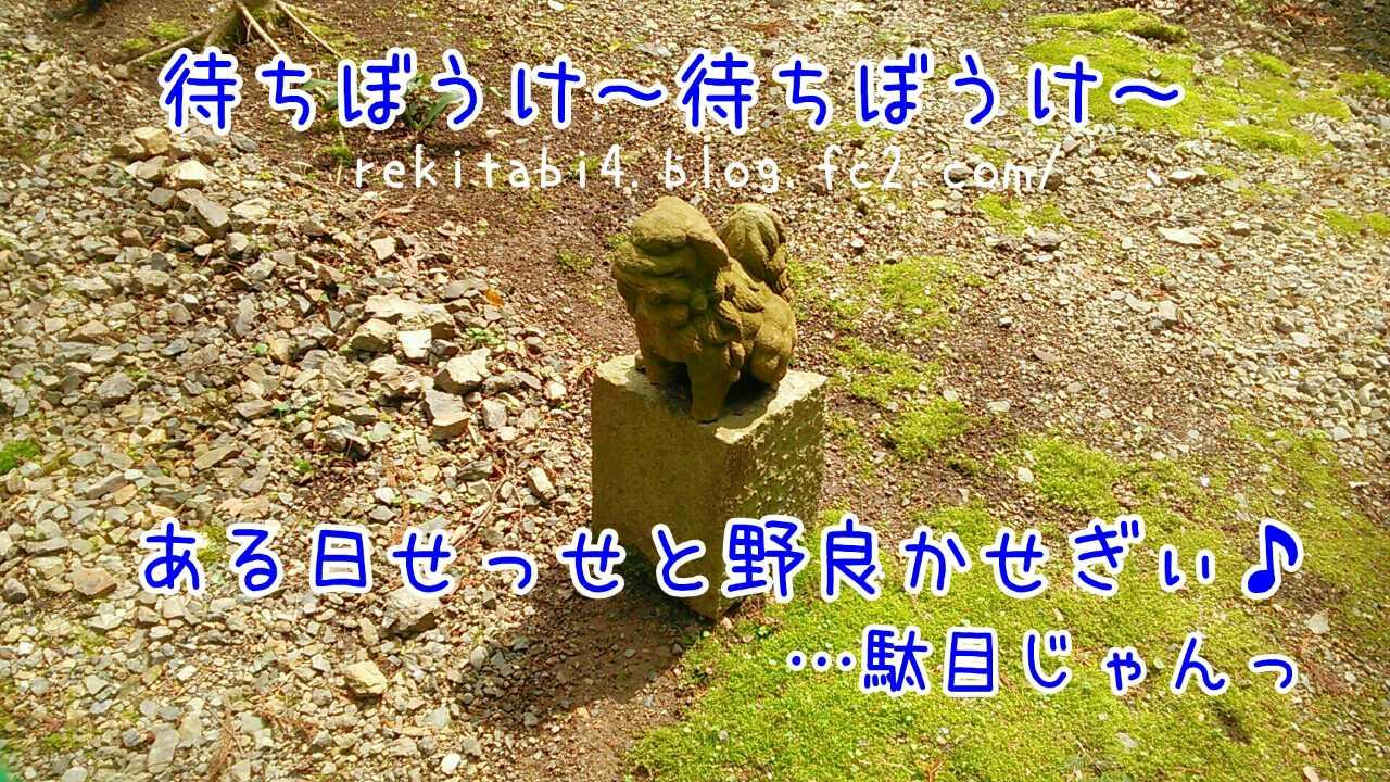 阿波公方の収入源「マムシよけ」...