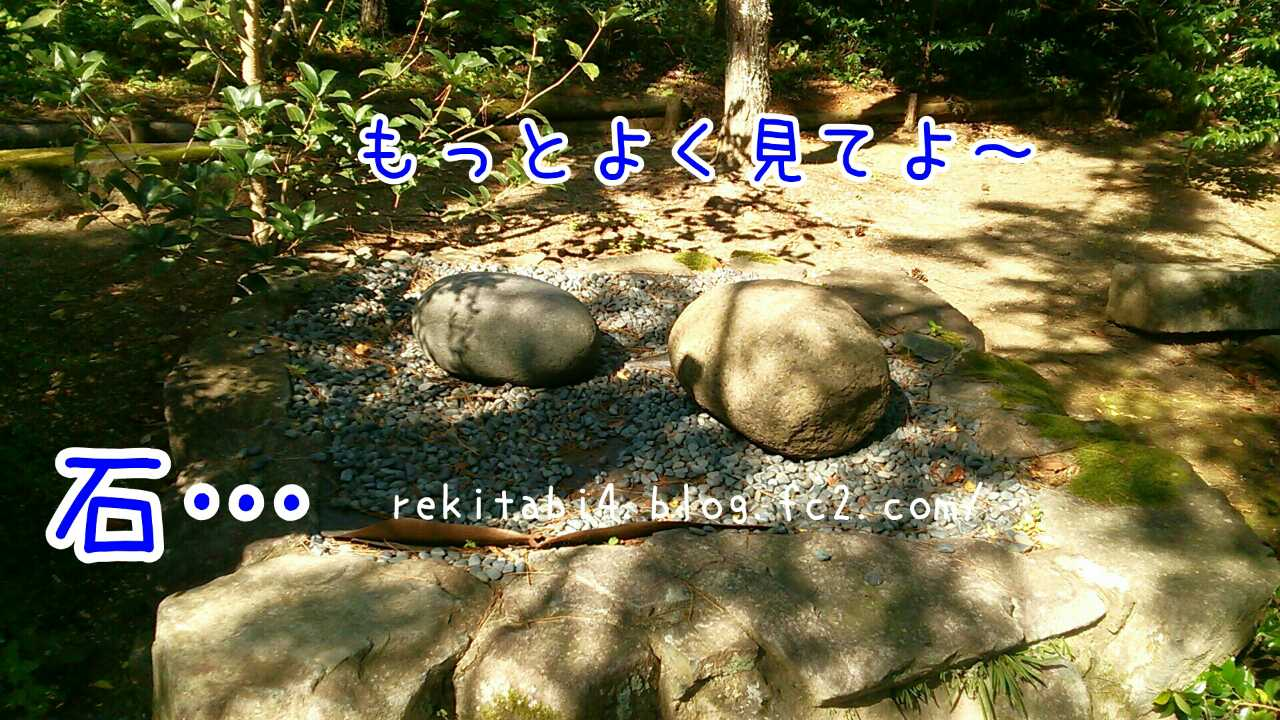 20160323234112008.jpg