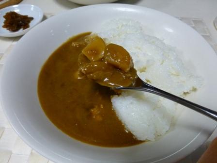 インド風チキンカレー5