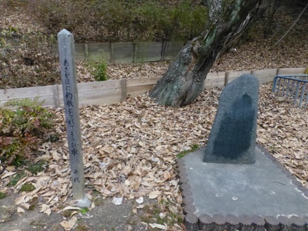 千里南公園40