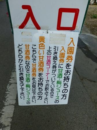 綾部山梅林7