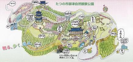 世界の梅公園3