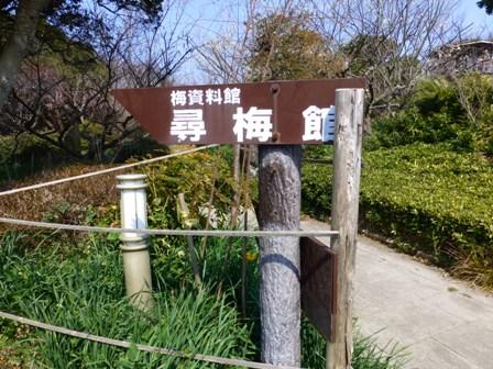 世界の梅公園14
