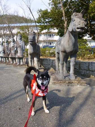 姫路太陽公園18