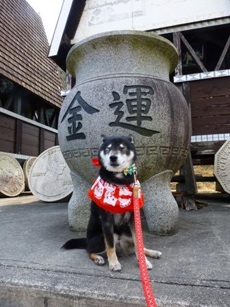 姫路太陽公園42