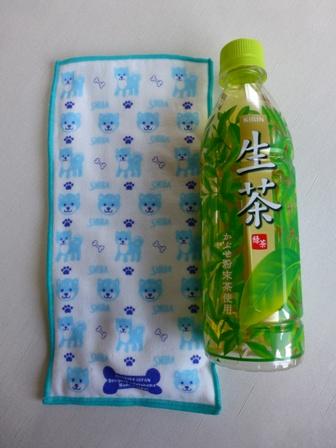 日本製ジェル付きポケットタオル15