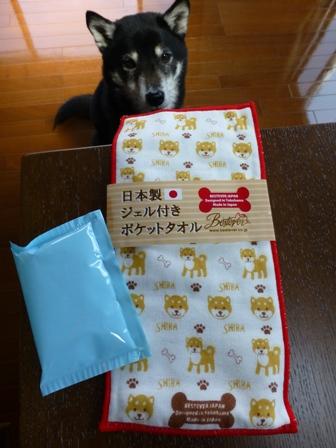日本製ジェル付きポケットタオル19