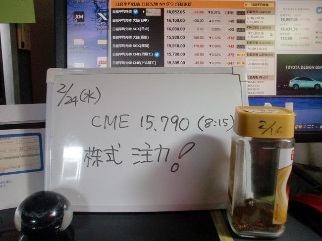 CIMG4796.jpg