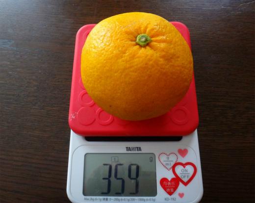 s-796-2甘夏の重さ