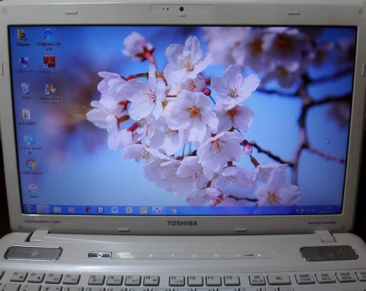 s804‐2桜