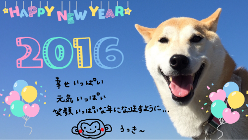 2016年元旦・お供え泥棒現る!