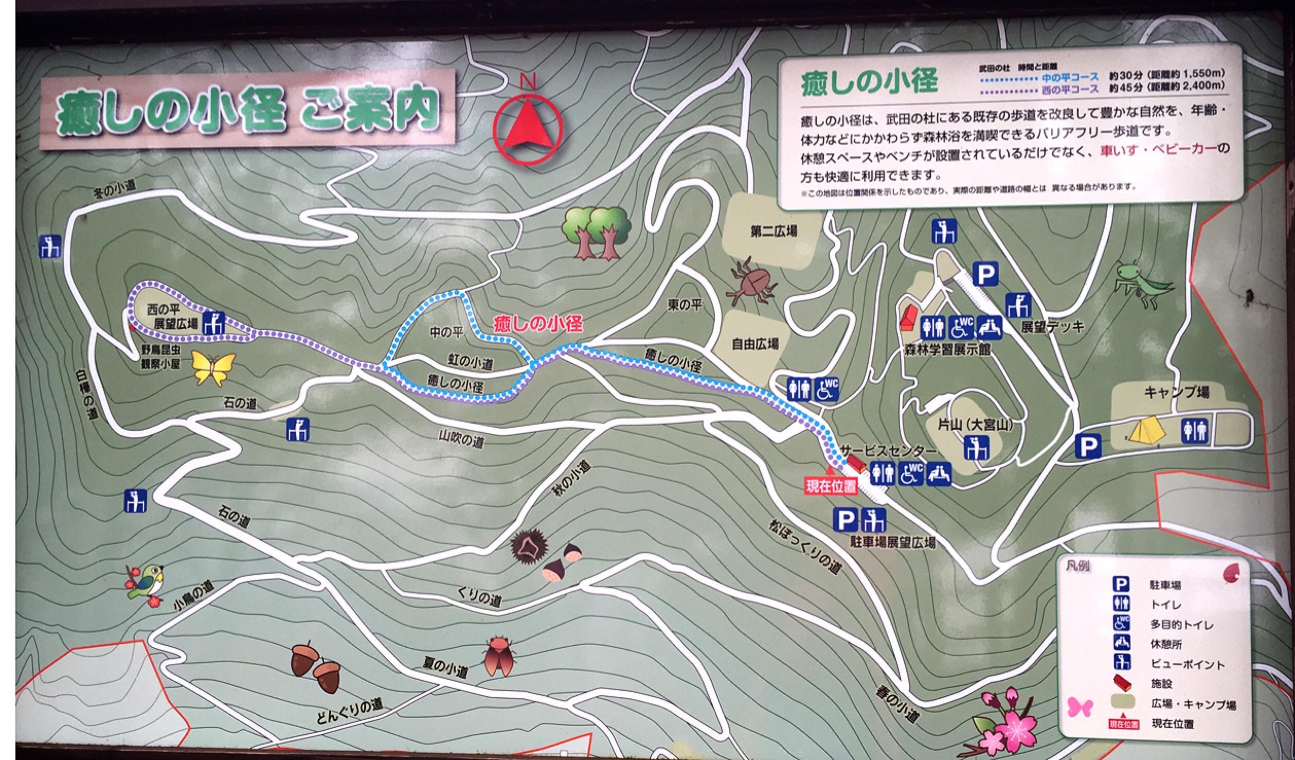 武田の杜を散策(健康の森・外周コース)