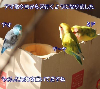 20160109105322753.png