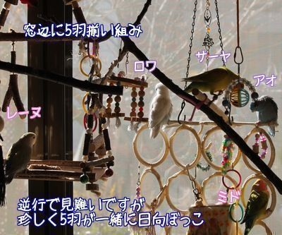20160114114146094.jpg