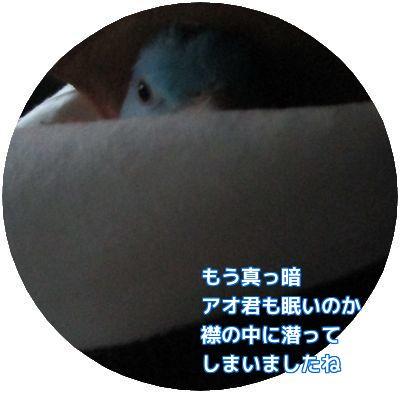 20160327001523bdc.jpg