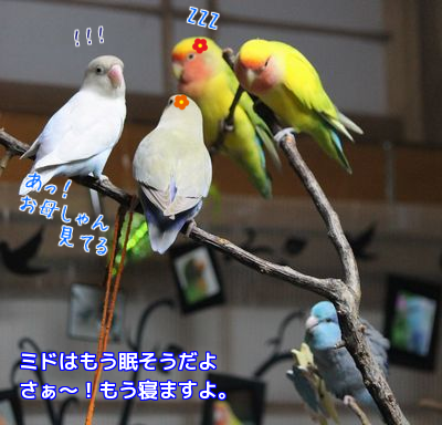 201603300048257aa.png