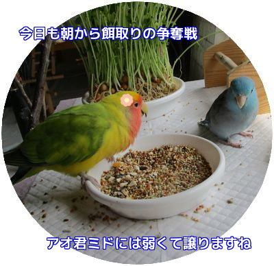 2016040411324714a.png