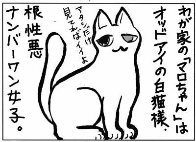 マロちゃん3-1