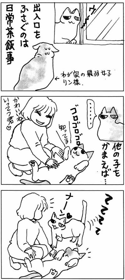 マロちゃん3-2