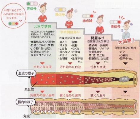 霊芝、フコイダン、スーパーフルーツ、111種類の生発酵エキスの力強いサプリ【酵素生活】
