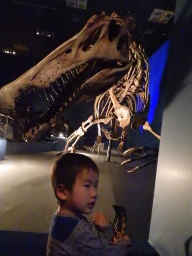 恐竜博2016 (9)