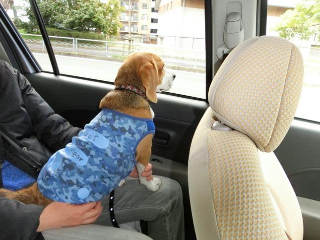 TARO&JIROの優しさで,赤ちゃん連れのお母さんにまた喜んでいただけました。
