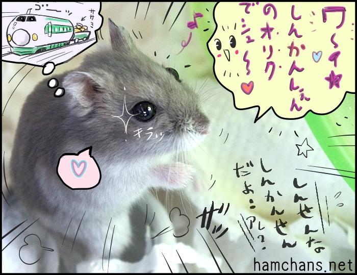 ささみブログ4