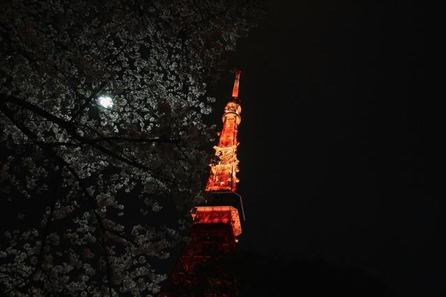201600401_tokyotower003.jpg