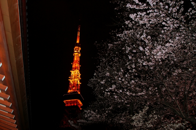 201600401_tokyotower005.jpg