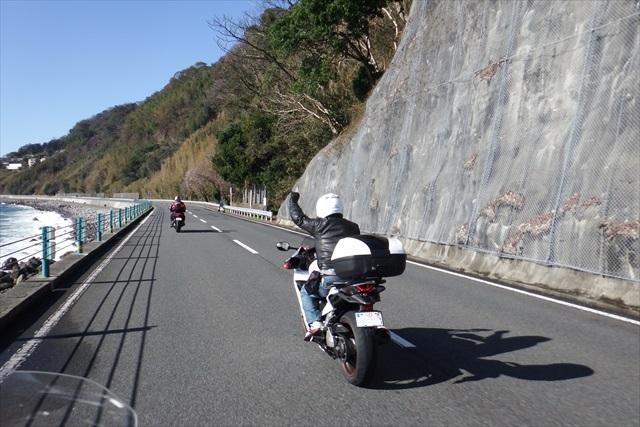2016_kawazu(21).jpg