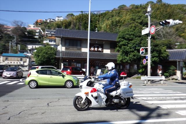 2016_kawazu(41).jpg