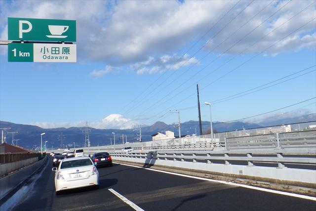 2016_kawazu(6).jpg