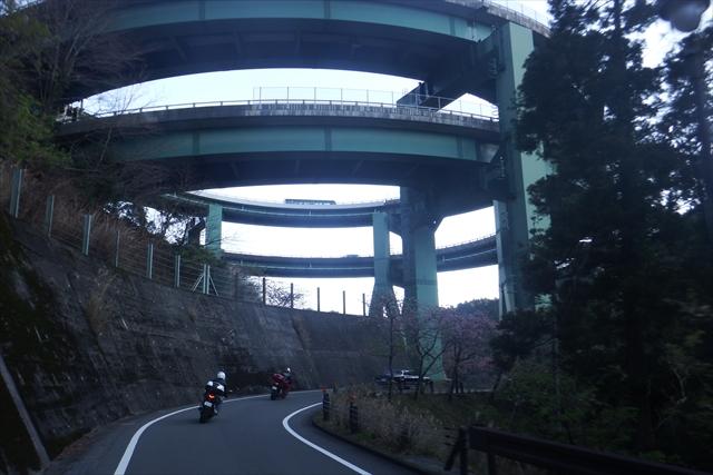 2016_kawazu(87).jpg