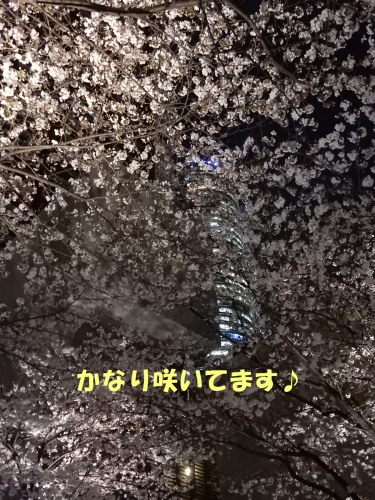 160401-3.jpg