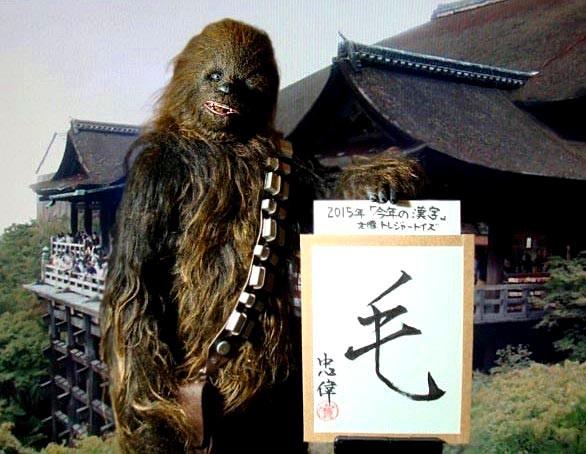 DSC00715 - 2015 kanji b