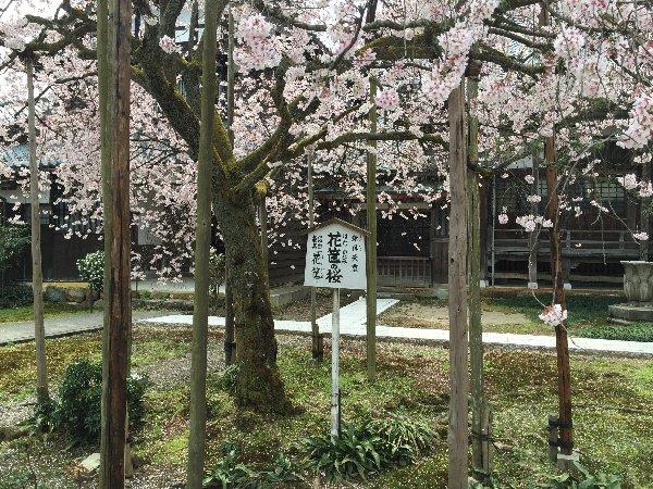 joufugi-006.jpg